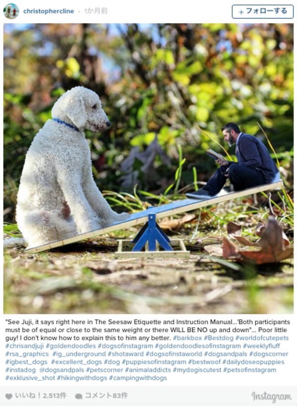 感動!攝影師Christopher Cline紀錄與他愛犬Juji的生活點滴3.png