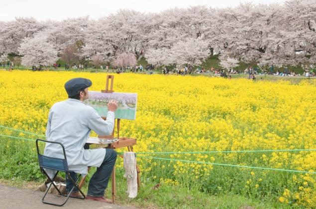 2017年最完整!日本春季賞櫻自由行必勝攻略.jpg