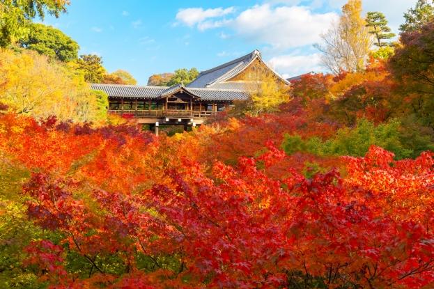 東福寺とうふくじ TOFUKUJI TEMPLE_6.jpg