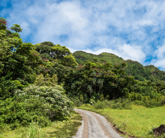 【HELLO!Hawaii】2017年夏威夷歐胡島Oahu自由行行程規劃與攻略古蘭尼牧場Kualoa Ranch11.png